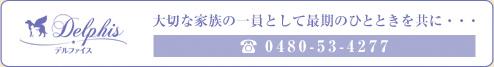 delphis-banner